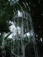 Palm House at Kew